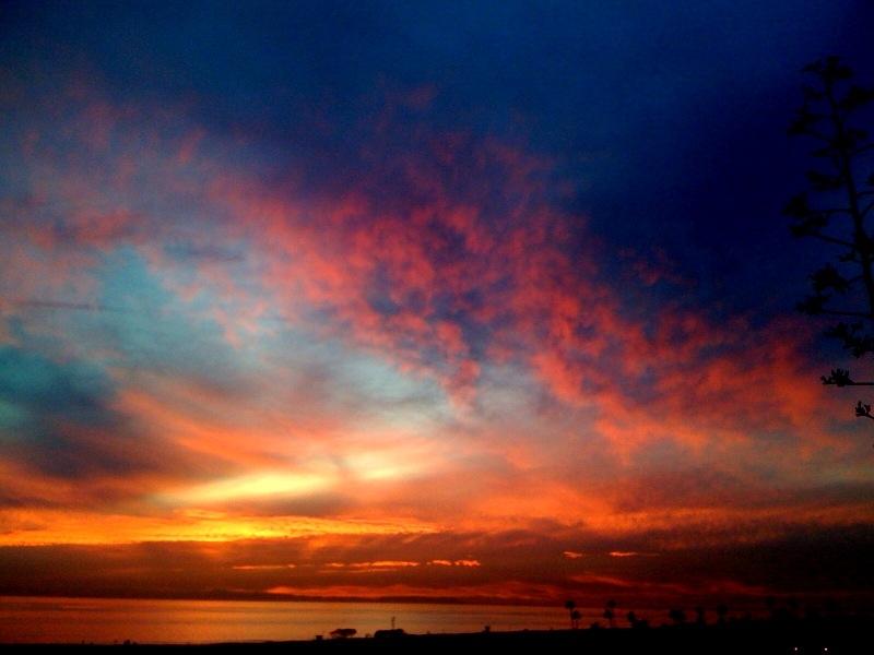 Enjoying Amazing sunset at home.